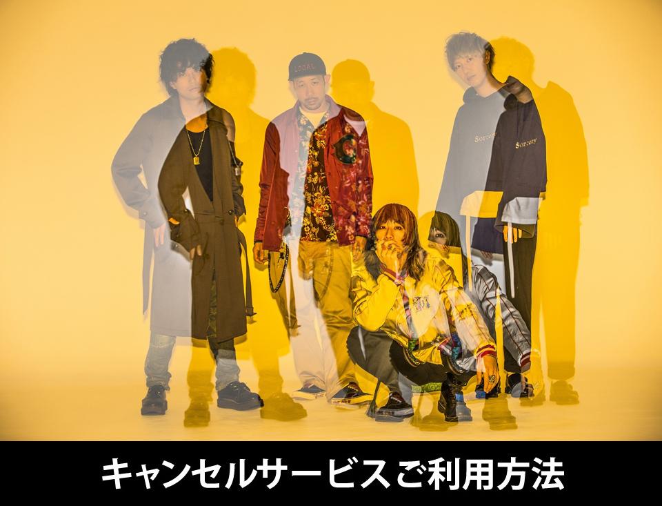 『SUPER BEAVER』神戸・代々木公演 キャンセル受付
